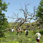 Individual Hiking Tour - Information and Prices - 4